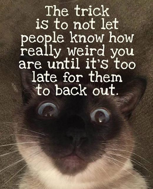 really weird