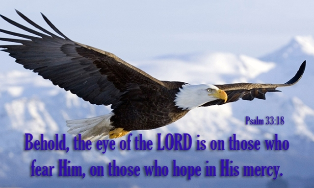 eye of the lord