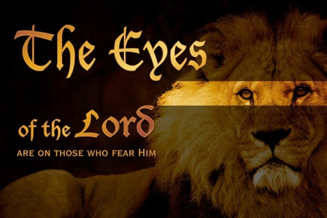 eyes of the lord wp