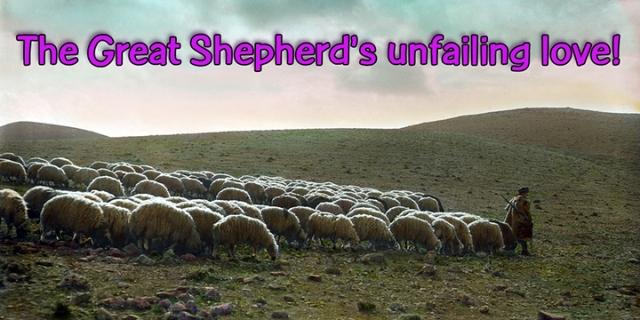 024 great shepherd