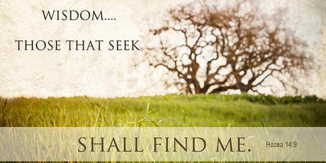 031 seek wisdom