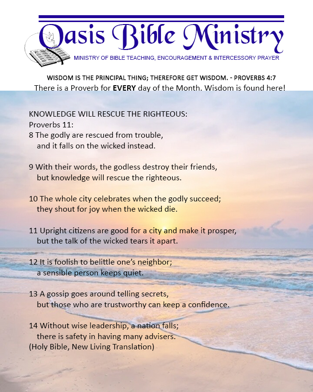 045 Proverbs 11_8-14