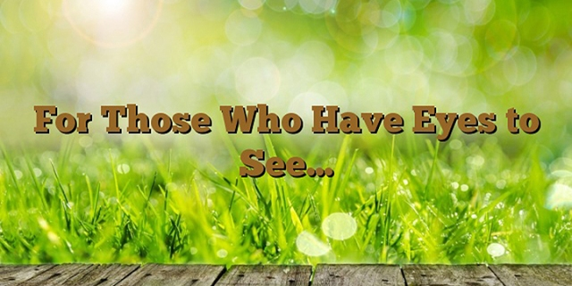 eyes to see wp