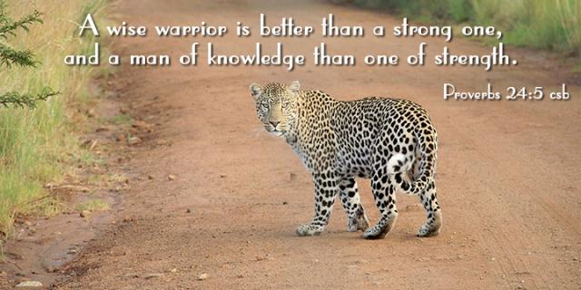 im listen to the wise