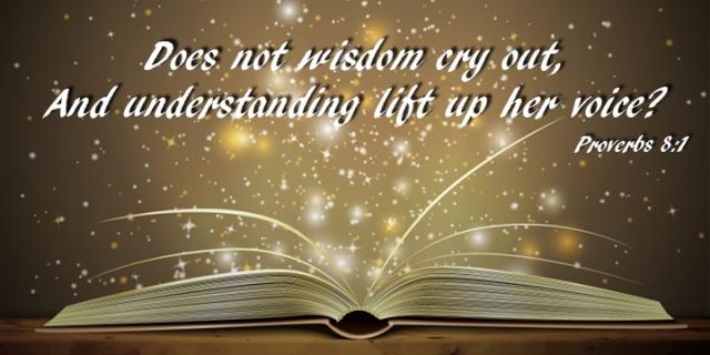 im wisdom cries out