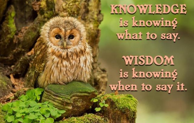 knowledge - wisdom