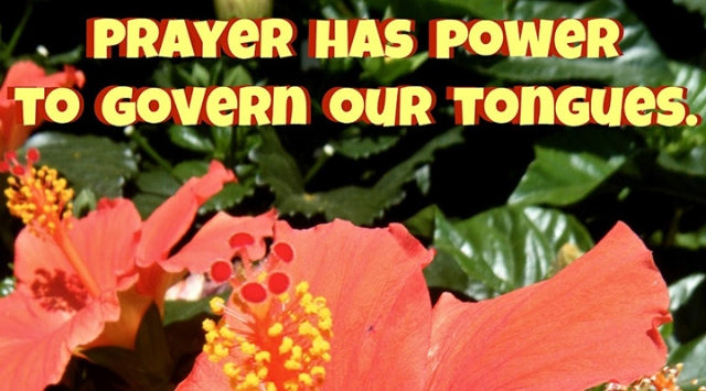 ns power of prayer over tongue