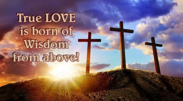 ns true love born of wisdom